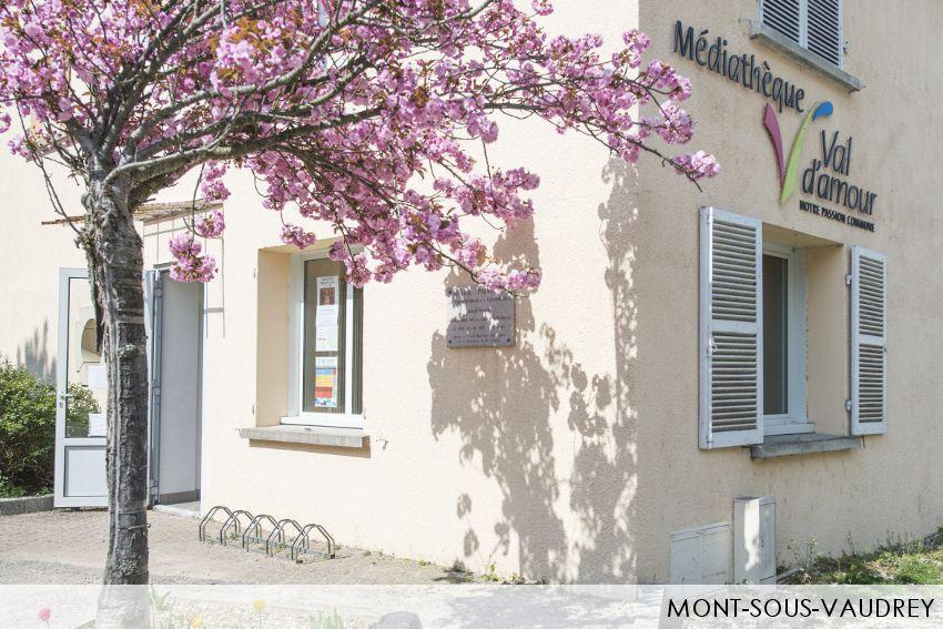 droppics-mont-sous-vaudrey-5