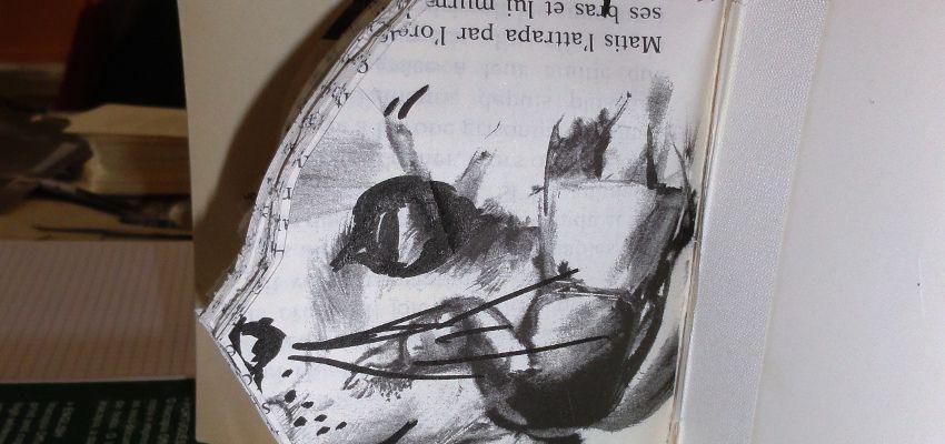 livres-desherbes-08